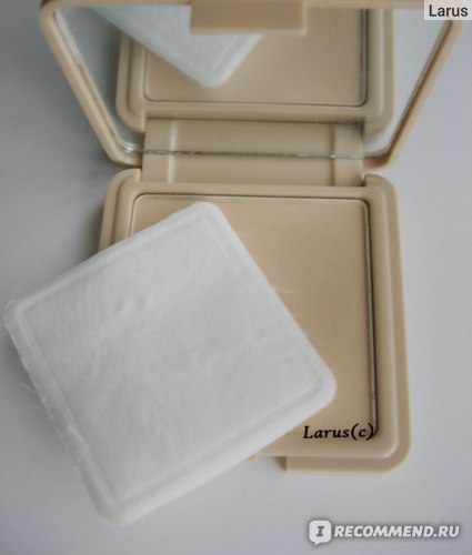 Компактная матирующая пудра Victoria Shu  - Smart Powder фото