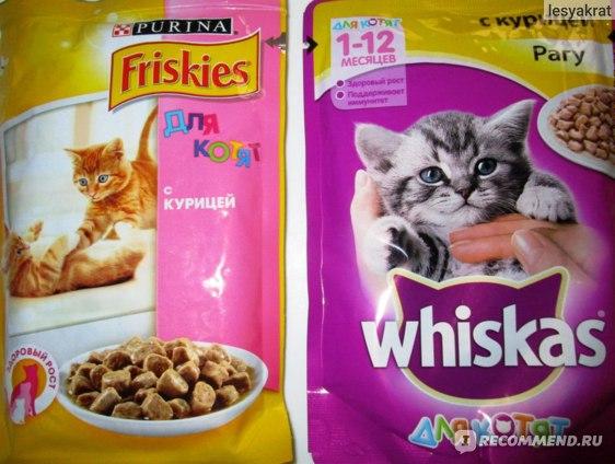 корм для котят Whiskas vs Friskies