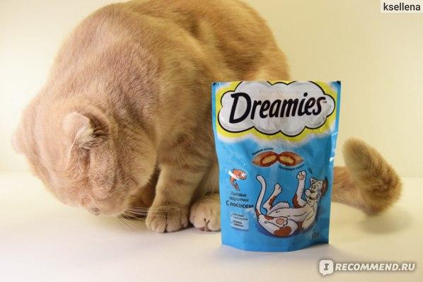 подушечки dreamies