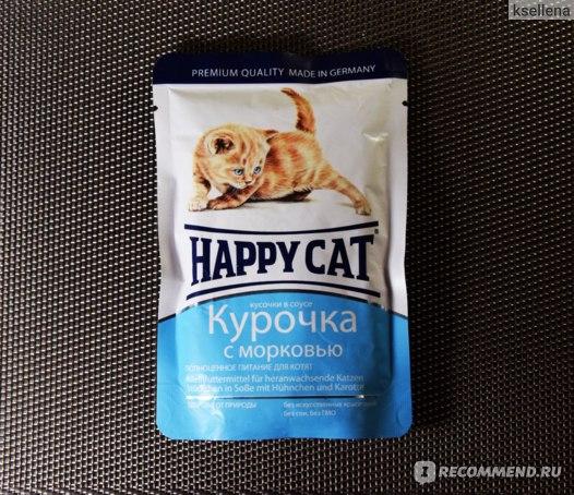 Happy cat для котят