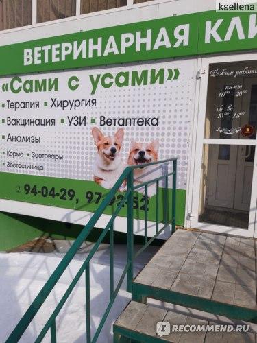 Ветеринарная клиника Сами с усами, Томск