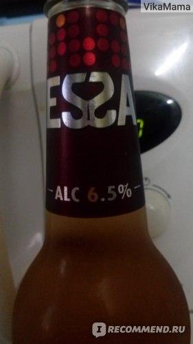 Эссе пиво сколько градусов