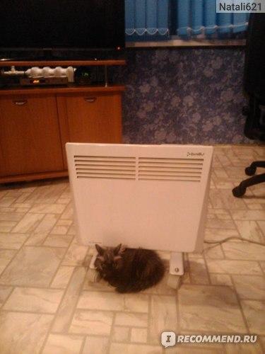 даже котик у нас его любит