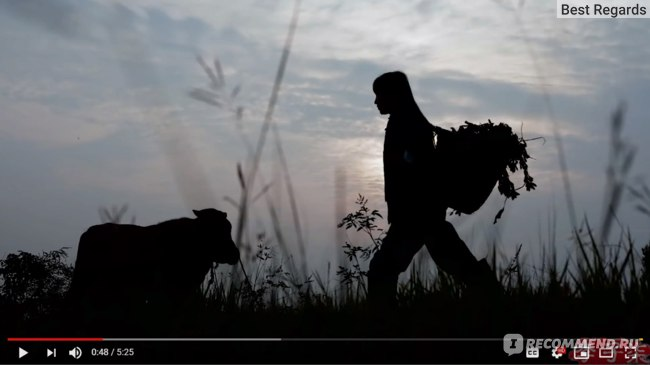 Сайт Канал на YouTube Liziqi https://www.youtube.com/c/cnliziqi фото