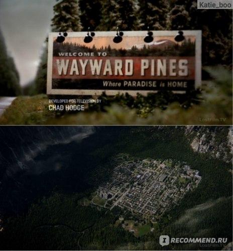 Сосны / Уэйуорд Пайнс / Wayward Pines фото