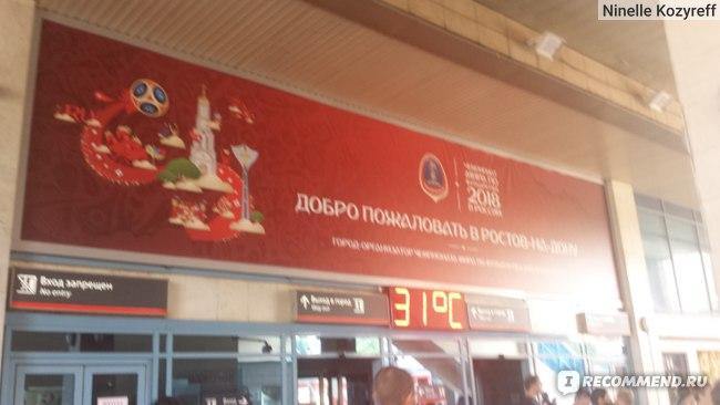 В 12 часов в Ростове уже +31!