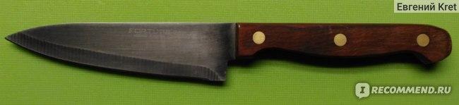 Нож для фруктов и овощей FORTUNA F5150.11 фото