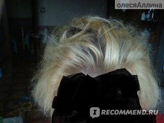 Краска для волос Palette SALON COLORS фото