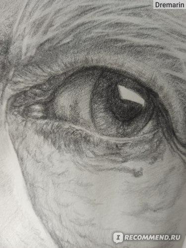 Чернографитный карандаш