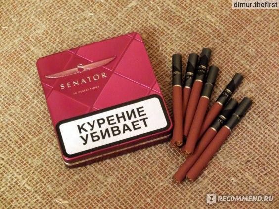 Где можно купить сигареты senator купить сигареты блэк тип в москве
