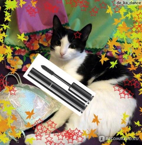 канонiчное фото: лухари на фоне кота, пушапа и занавески в креативной рамочке