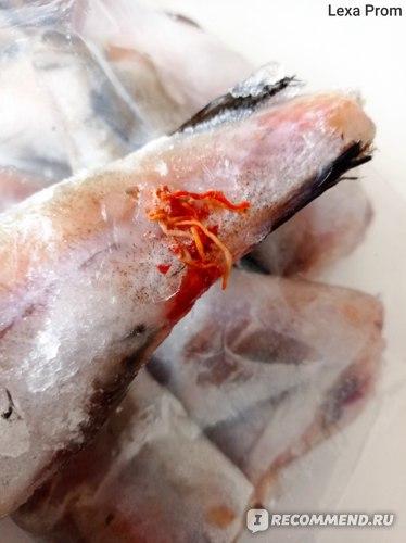 Рыба Красная цена Минтай потрошеный обезглавленный мороженый фото