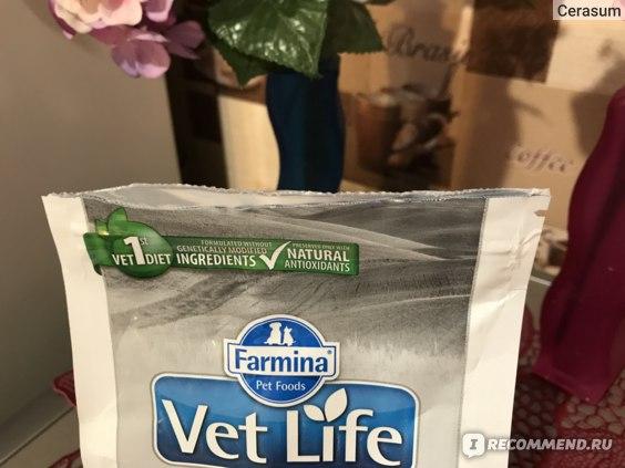 Корм для кошек Farmina Vet Life Obesity