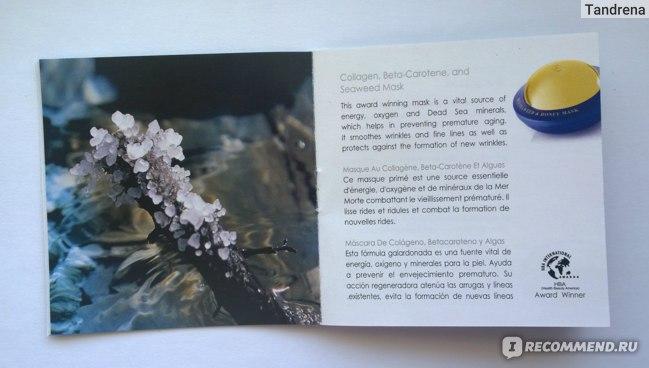 Ночной крем Premier by Dead Sea Регенерирующий для всех типов кожи Regenerating Night Cream фото