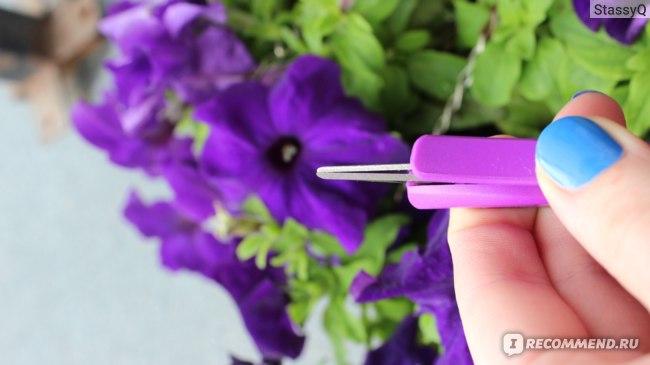 Ножницы для орхидей Garden Show прямое лезвие 12х3,5 см фото