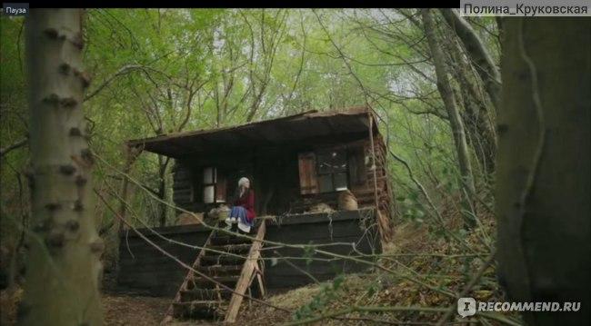 Королек Птичка Певчая / Çalikusu (2013, фильм) фото