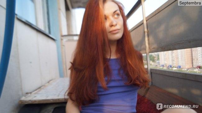Осветлитель для волос SYOSS  фото
