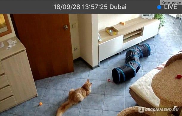Камера охранного видео наблюдения Cloud Storage Wireless security camera фото