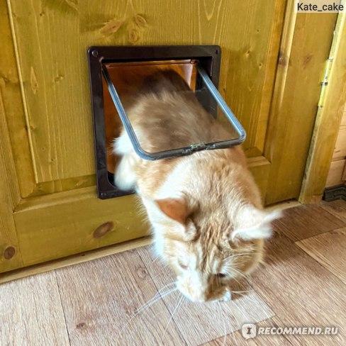 Дверца для кота