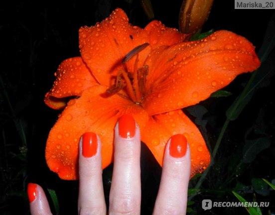 Нанесенный на ногти - вспышка (пытаюсь слиться с цветком))
