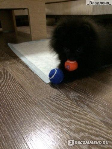 Два мячика в ротик не помещаются((