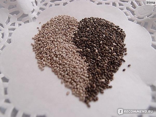 семена чаи отзывы