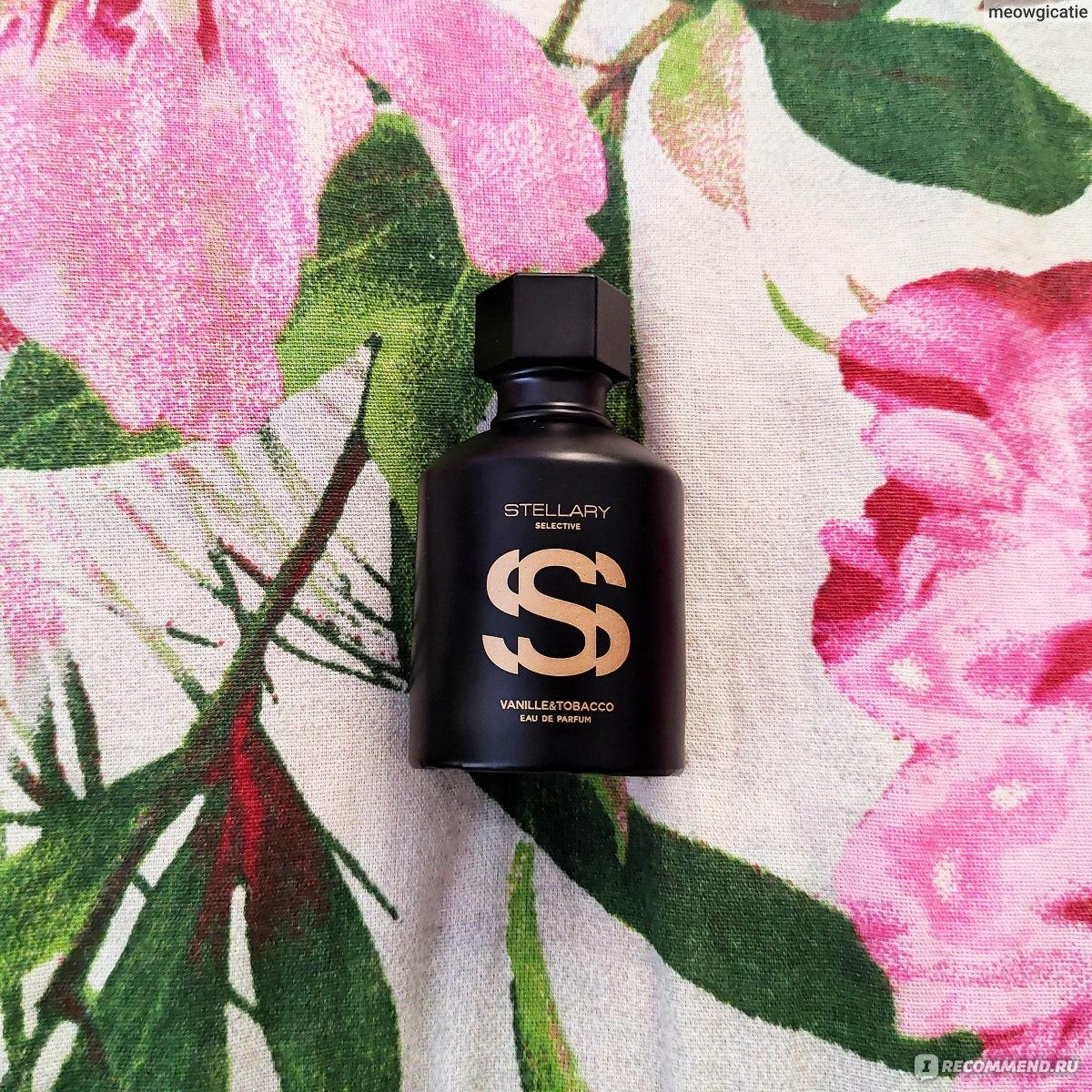 Stellary парфюм купить